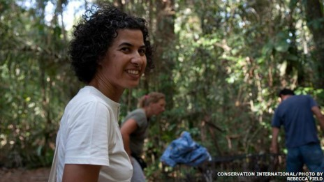 Pool prevê resgatar mais 300 preguiças em nova área da floresta que será derrubada (Fot Conservation International/Photo By/Rebecca Field/BBC)