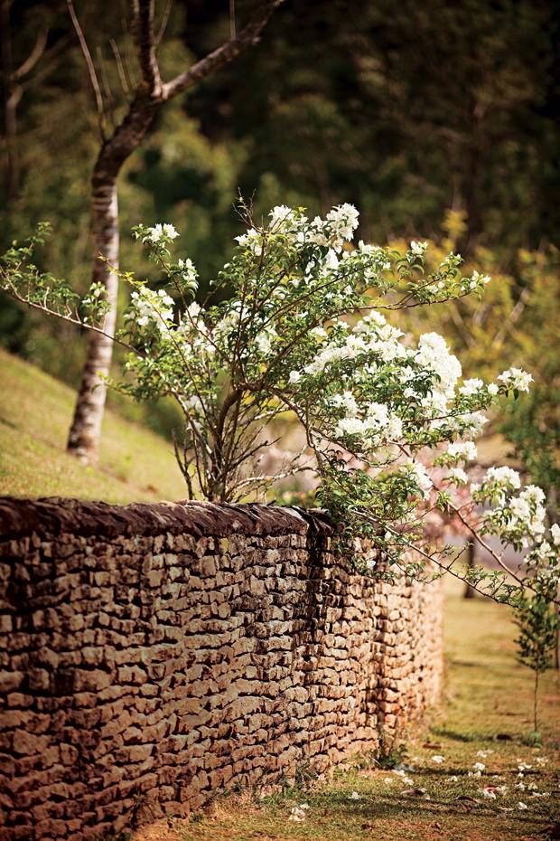 A primavera recheada de flores brancas cobre parte do muro de pedras moledo (Foto: Gui Morelli)