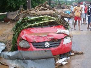 Carros e árvores após a enchente em Itaóca (Foto: Gilmar dos Santos Araujo/VC no G1)