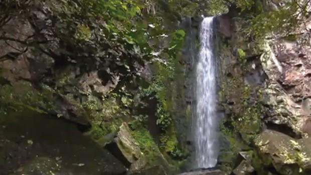 Meu Paraná mostrou as belezas das cachoeiras urbanas de Foz do Iguaçu (Foto: Reprodução/RPC)
