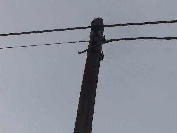 Homem furtou 150 metros de fios de cobre na região do Parque Ecológico (Foto: Fábio de Souza/ EPTV)