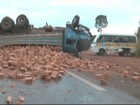 Sete ficam feridos em colisão entre três veículos em rodovia de Franca