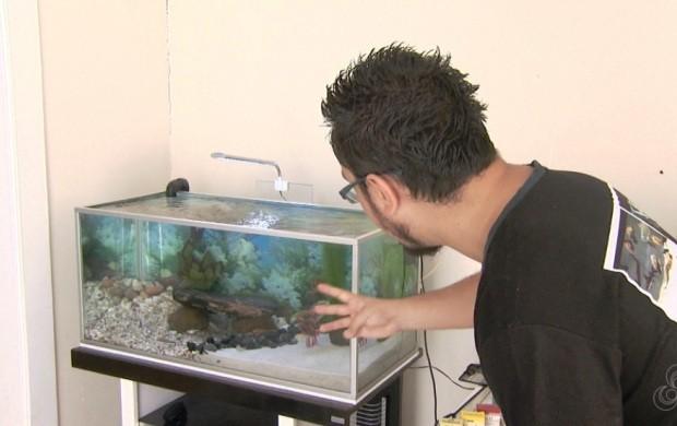 Aquaristas falam de hobby (Foto: Amazônia Revista)