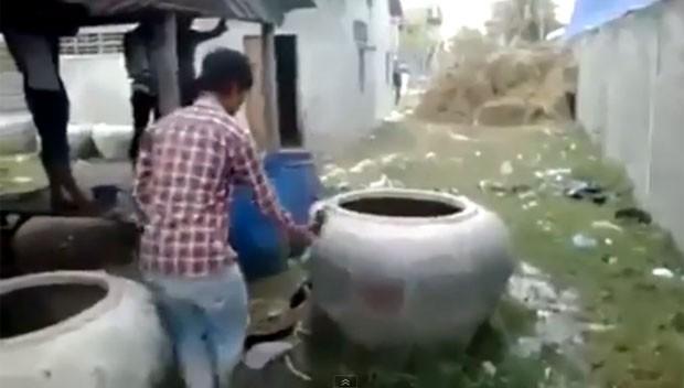 Vídeo mostra vaca sendo resgatada após ficar entalada em vaso (Foto: Reprodução/YouTube/Funny Videos)