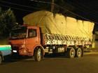 Carvoeiro é autuado em R$ 15 mil por transporte de carvão nativo em MS