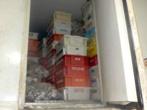 Parte do material apreendido foi encontrada em um caminhão baú. (Foto: Divulgação/Polícia Militar Ambiental)