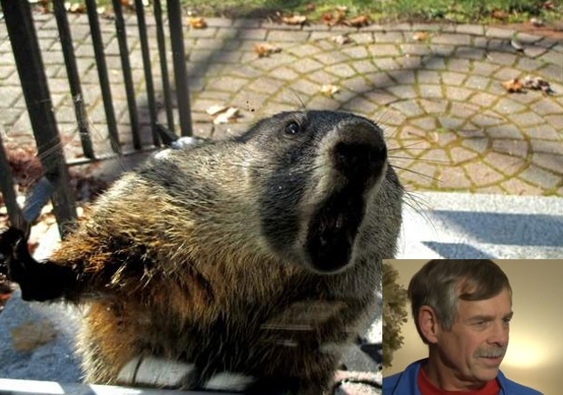 Americano se refugia em casa após ser atacado por marmota furiosa (Foto: Reprodução/Twitter/Steve Minich-Reprodução/YouTube/WCVB)