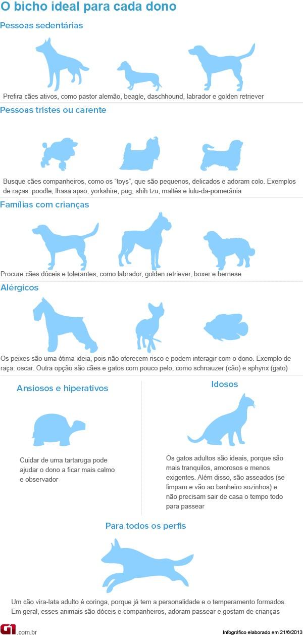 Animais de estimação (Foto: Arte/G1)