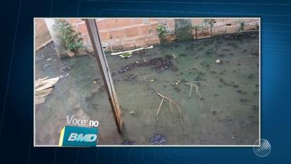 Telespectadora reclama de situação de casa abandonada em Lauro de Freitas
