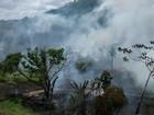 Bombeiros tentam apagar incêndio em área verde próxima à Arena PE