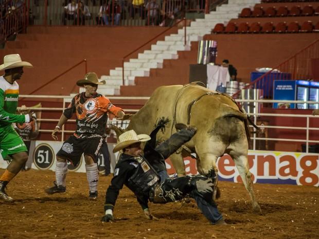 Na final da Liga Nacional de Rodeio, touros levaram a melhor e derrubaram oito dos dez peões. (Foto: Mateus Rigola/G1)