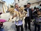 Palestino cria filhotes de leão como animais de estimação em Gaza