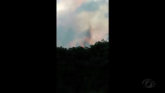Incêndio atinge área de manguezal em São Miguel dos Milagres, Alagoas