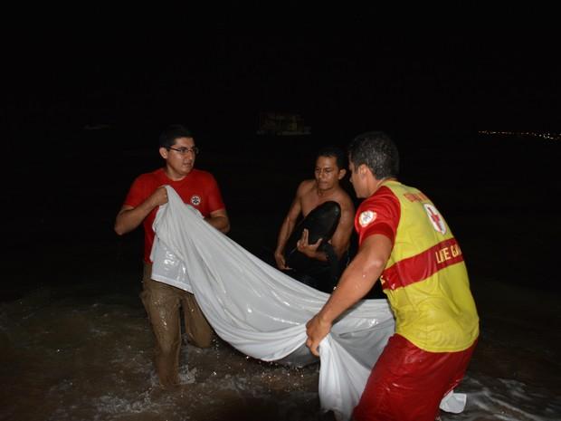 Animal foi tirado da água para não se afogar (Foto: Walter Paparazzo/G1)