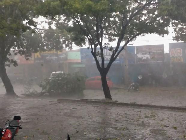 Chuva forte provoca estragos, alaga ruas e derruba árvores em Goiânia, gOIÁS (Foto: Reprodução/Facebook)