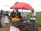 Fiscais apreendem 395 kg de frutas e 549 produtos em operação no DF