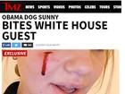 Cachorrinha de Barack Obama machuca amiga da família, diz site