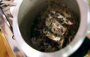 Sardinha na pressão com ervas: receita da Bela Gil