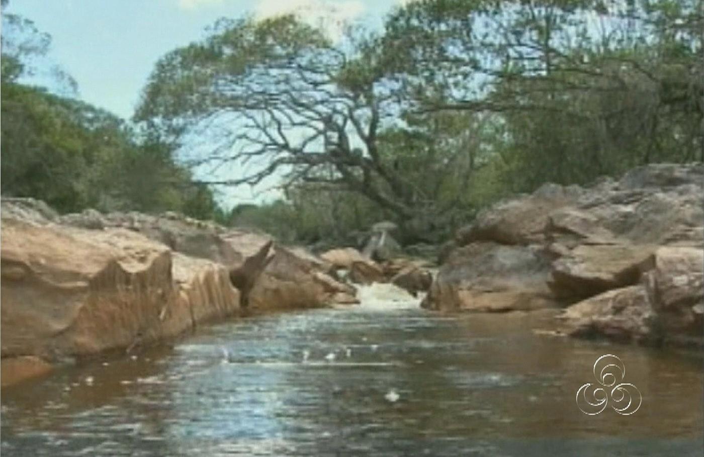 Nascentes de água se transformam em pequenos igarapés na região (Foto: Amazônia TV)