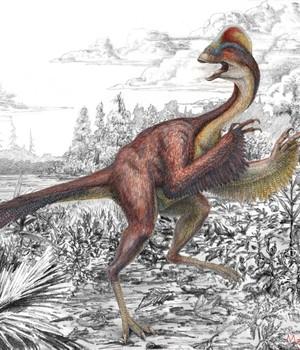 A galinha do inferno - o dinossauro que era petisco do Tiranossauro rex