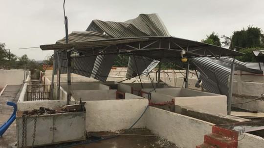 Tempestade destelha empresas e causa prejuízos de até R$ 300 mil em Trabiju, SP