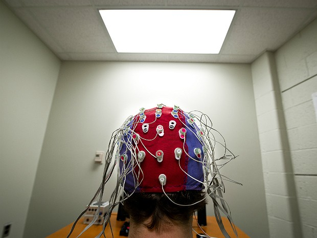 Cérebro (Foto: G.L. Kohuth/Michigan State University)