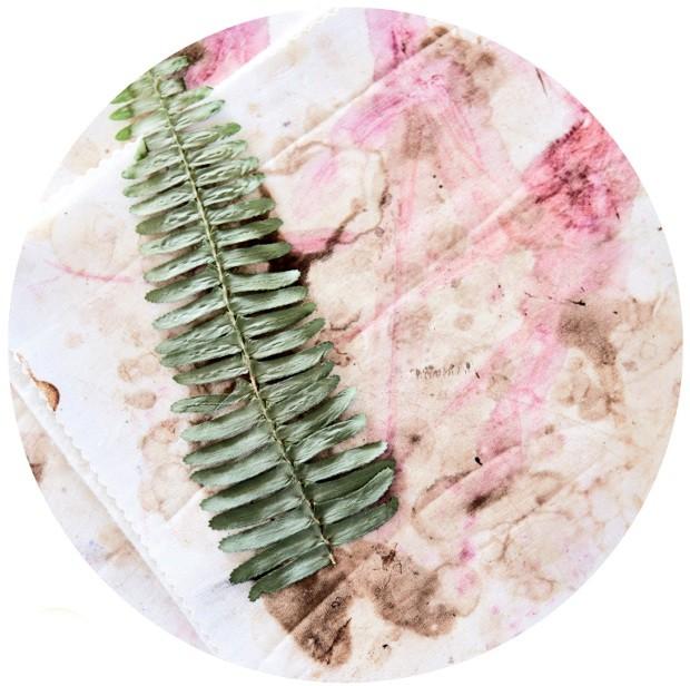 Com um rolo de macarrão, aplane as plantas com cuidado. Envolva-as em um tecido de algodão e apoie um livro pesado sobre elas. Espere uma semana e substitua o tecido se necessário. Mantenha assim por mais duas ou três semanas (Foto: Warren Heath / Bureaux.Co.Za)