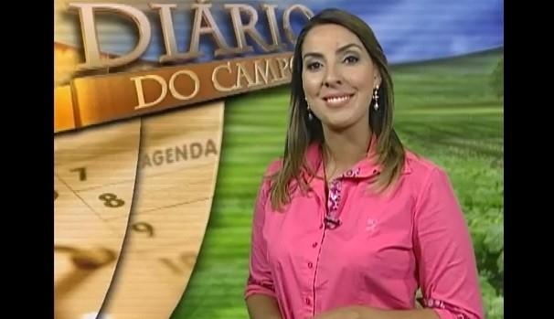 Apresentadora Priscila Tovic (Foto: Reprodução / TV Diário )
