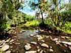 Reserva de preservação ambiental de quase 5 mil hectares é lançada em SC