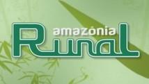Veja reportagens sobre o campo e o agronegócio (AVG / TV Amazonas)