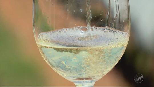 Parceria entre Epamig e produtores de vinho rende prêmio internacional para bebida do Sul de MG