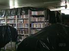 Mais de 1.500 pessoas são atingidas pela chuva em Nova Esperança