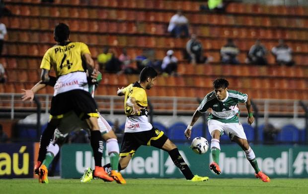 Leandro Palmeiras Criciúma (Foto: Marcos Ribolli/GloboEsporte.com)