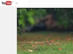 Vídeo foi compartilhado nas redes sociais (Foto: Reprodução Youtube)
