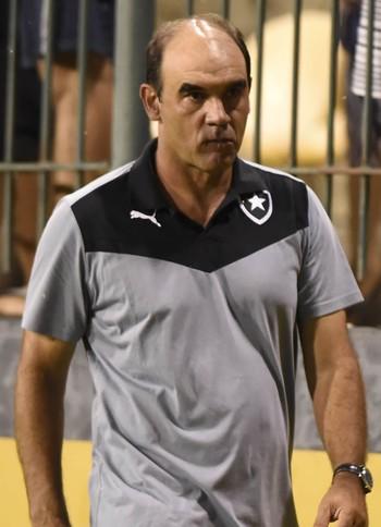 Ricardo Gomes durante jogo do Botafogo (Foto: André Durão/Globoesporte.com)