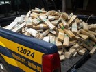 Polícia apreende duas carretas carregadas de maconha em MS