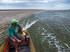 Lama no Rio Doce: desastre faz 7 meses no Dia do Meio Ambiente