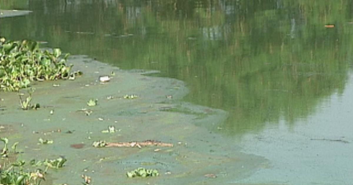 Manchas de sujeira aparecem na beira do rio em Itapuí - Globo.com