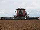 MT deve ser responsável por quase 25% da produção de grãos em 2016