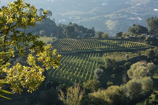 Roteiro de viagem: as vinícolas e paisagens naturais da região do Douro (Foto: Photo For Press/ divulgação)
