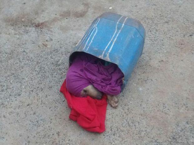 Cão estava embrulhado dentro de balde (Foto: FM Integração/Divulgação)