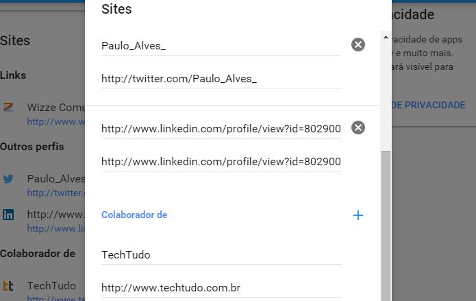 Preencha com links de seus sites e redes sociais (Foto: Reprodução/Paulo Alves)