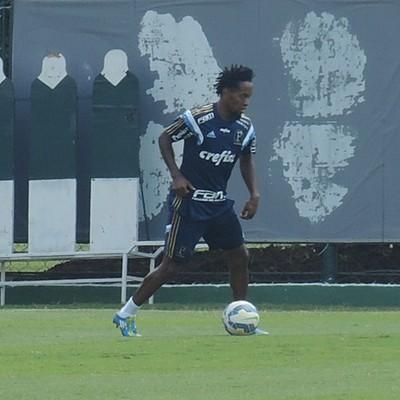 Zé Roberto Palmeiras (Foto: Felipe Zito)