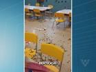 Vândalos destroem janelas e brinquedos de escola de Bertioga, SP
