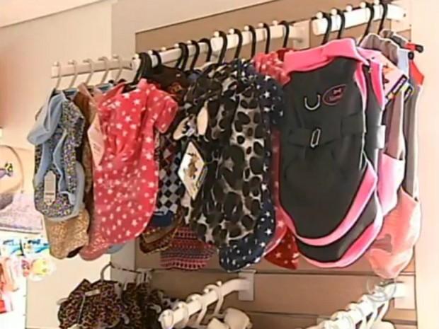 Roupas para animais segue tendências da moda (Foto: Reprodução / TV TEM)