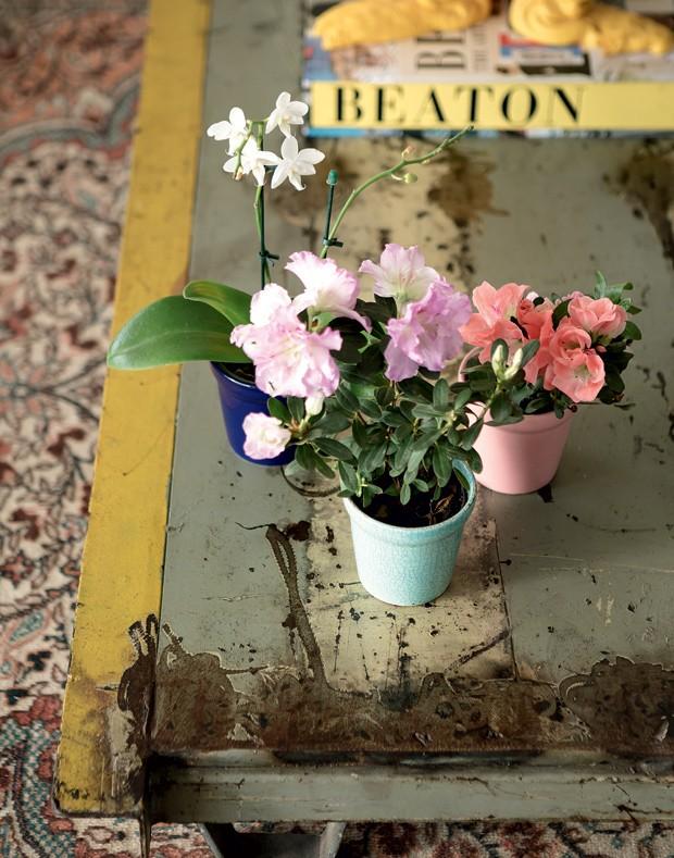 apartamento-decoracao-estudio-vitor-penha-estilo-industrial-concreto-aparente-flor (Foto: Edu Castello/Editora Globo)