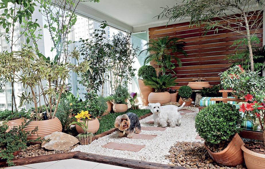 fotos jardim paisagismo:Mesmo morando em apartamento, o west highland white terrier Billy e o
