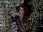 Anarriê! Elenco de 'Babilônia' realiza festa julina depois de gravações
