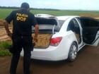 Polícia apreende 900 kg de maconha em veículo na região sul de MS