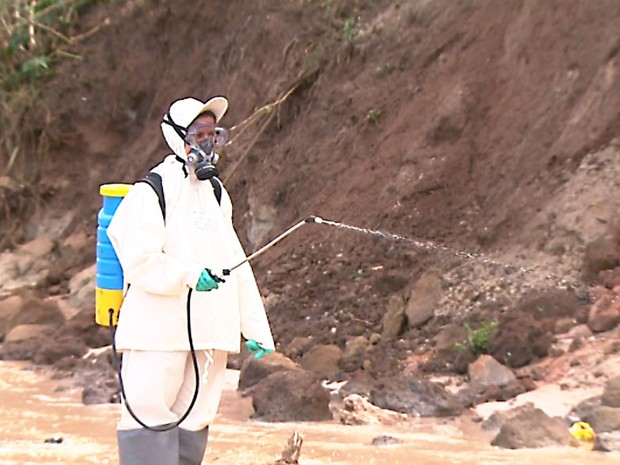Funcionários da Secretaria Municipal da Saúde aplicam veneno nas margens de córregos como tática para combater mosquito da dengue (Foto: Chico Escolano/EPTV)